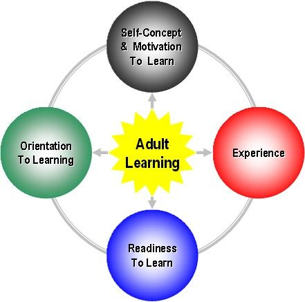 four cognitive principles of learning-strategy instruction
