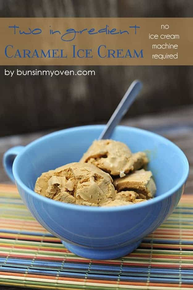 ice cream maker instructions and recipes